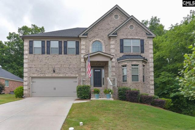 653 Village Market Drive, Chapin, SC 29036 (MLS #472093) :: The Meade Team