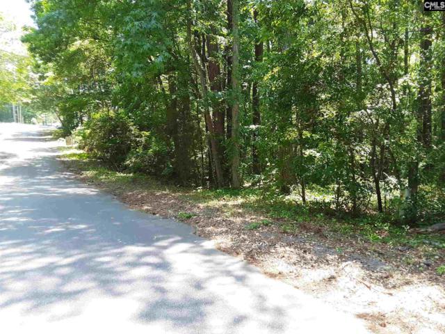 354 Big Timber Drive, Lexington, SC 29073 (MLS #472179) :: Resource Realty Group