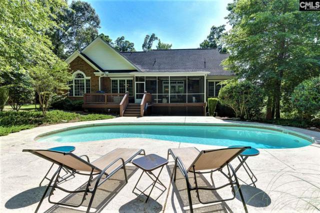 413 Jasmine Key Lane, Chapin, SC 29036 (MLS #472326) :: EXIT Real Estate Consultants
