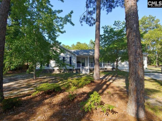 227 Winter Way Drive W, Lugoff, SC 29078 (MLS #472340) :: The Olivia Cooley Group at Keller Williams Realty