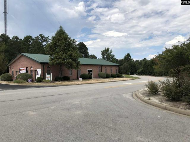 209 Rice Creek Farms Road, Columbia, SC 29229 (MLS #472458) :: EXIT Real Estate Consultants