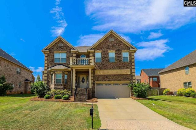 237 Massey Circle, Chapin, SC 29036 (MLS #472481) :: EXIT Real Estate Consultants