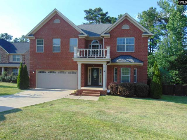 224 Massey Circle, Chapin, SC 29036 (MLS #472626) :: EXIT Real Estate Consultants