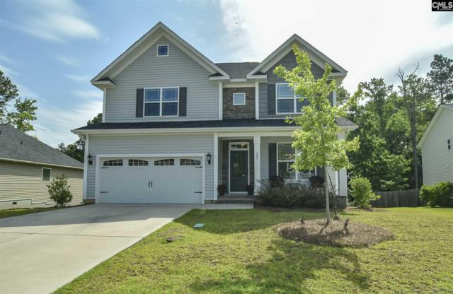 207 Woolbright Lane, Chapin, SC 29036 (MLS #472662) :: The Olivia Cooley Group at Keller Williams Realty