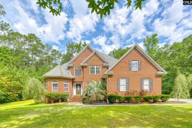 220 Soft Stone Drive, Blythewood, SC 29016 (MLS #472726) :: EXIT Real Estate Consultants