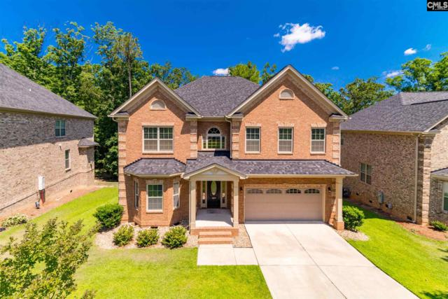 329 Lighthouse Lane, Chapin, SC 29036 (MLS #472728) :: EXIT Real Estate Consultants