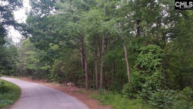 Oscar Amick Road, Irmo, SC 29063 (MLS #472803) :: Loveless & Yarborough Real Estate