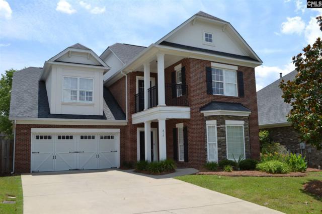 813 Boatswain Loop, Chapin, SC 29036 (MLS #472844) :: EXIT Real Estate Consultants