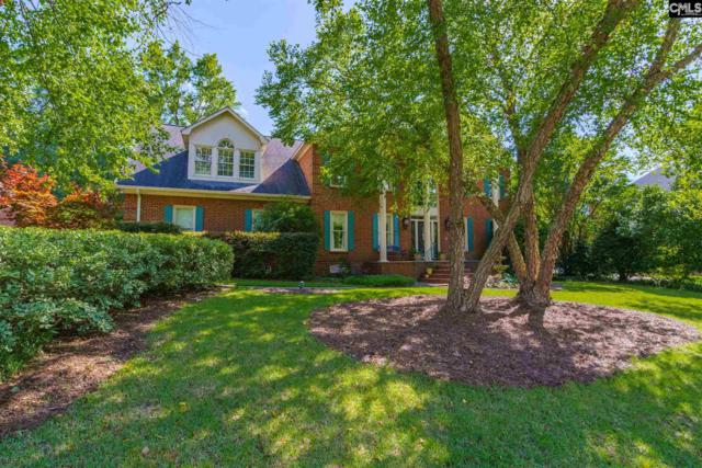419 W Passage, Columbia, SC 29212 (MLS #472918) :: Home Advantage Realty, LLC
