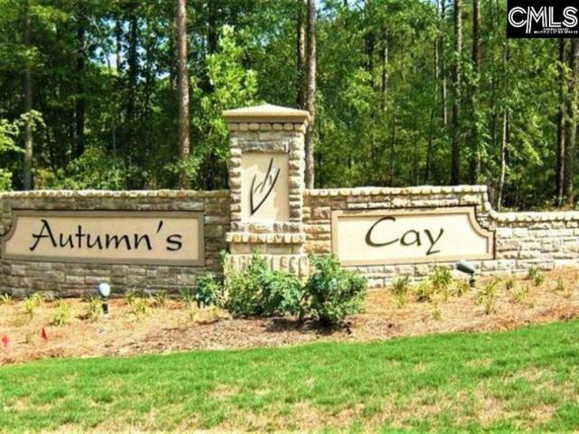 105 Autumn Drive, Prosperity, SC 29127 (MLS #472954) :: EXIT Real Estate Consultants