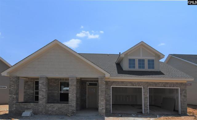 235 Matisse Lane, Chapin, SC 29036 (MLS #473149) :: EXIT Real Estate Consultants