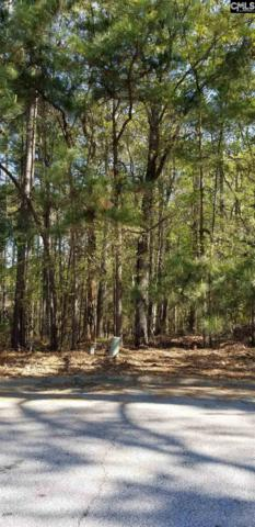 118 Club Court, Chapin, SC 29036 (MLS #473192) :: EXIT Real Estate Consultants
