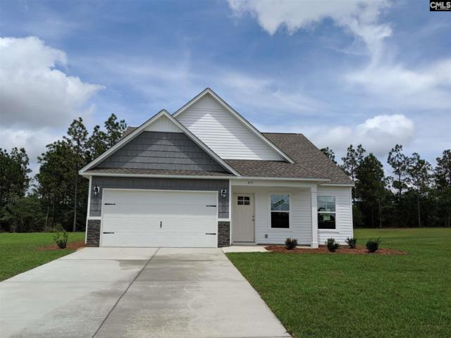 417 Crassula Drive, Lexington, SC 29073 (MLS #473202) :: Home Advantage Realty, LLC