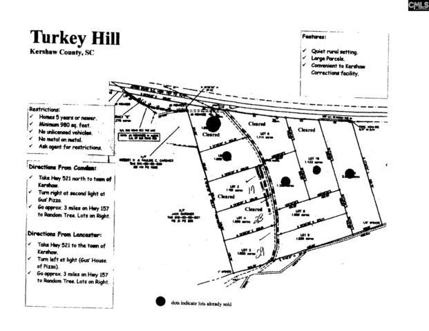 29 Random Tree Road, Kershaw, SC 29067 (MLS #473216) :: EXIT Real Estate Consultants