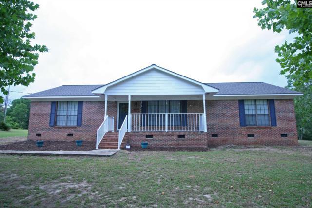 1017 Blackbird Road, Wagener, SC 29164 (MLS #473317) :: The Olivia Cooley Group at Keller Williams Realty