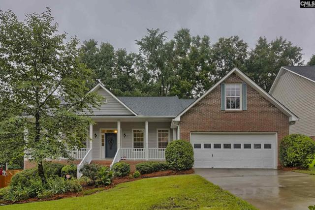 121 Kings Creek Road, Irmo, SC 29063 (MLS #473564) :: EXIT Real Estate Consultants
