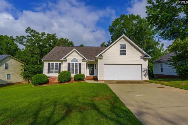 210 High Bluff Lane, Irmo, SC 29063 (MLS #473571) :: EXIT Real Estate Consultants