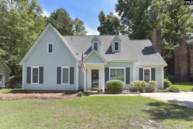 217 Rushing Wind Drive, Irmo, SC 29063 (MLS #473572) :: EXIT Real Estate Consultants