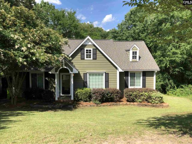 11 Castle Vale Court, Irmo, SC 29063 (MLS #473614) :: EXIT Real Estate Consultants