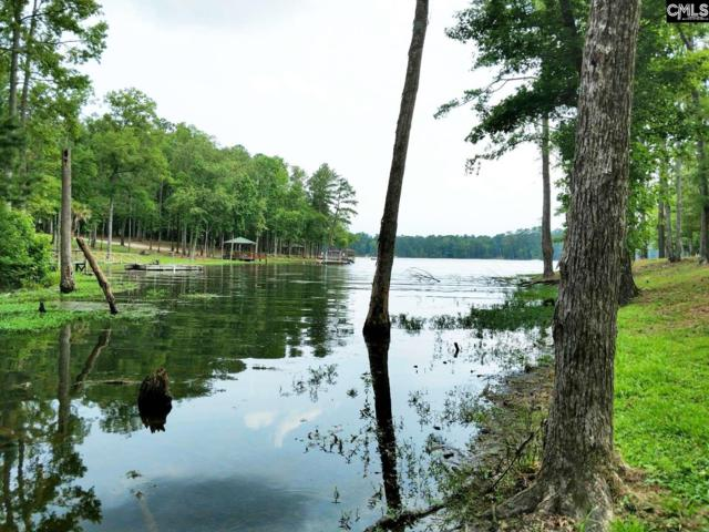 0 Tom Savage Road, Prosperity, SC 29075 (MLS #473631) :: Resource Realty Group