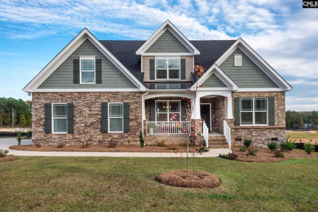 227 Chapin Brook Court, Chapin, SC 29036 (MLS #473632) :: Home Advantage Realty, LLC