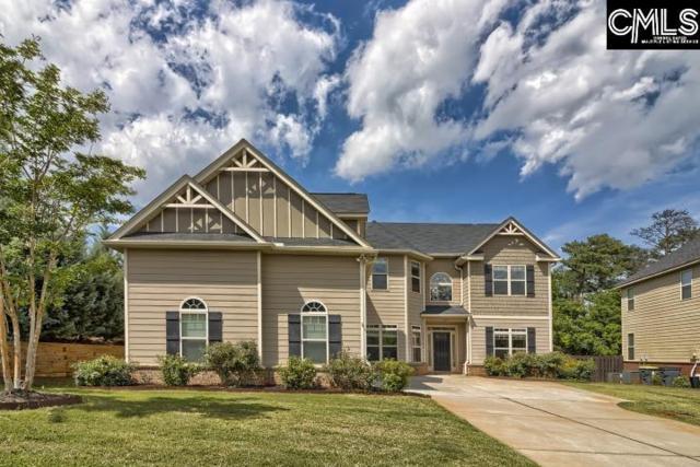103 Spillway Boulevard, Lexington, SC 29072 (MLS #473651) :: EXIT Real Estate Consultants