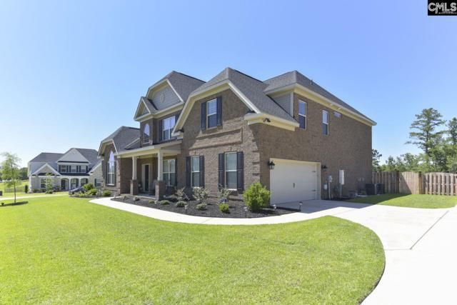 1141 Long Ridge Way, Lexington, SC 29073 (MLS #473682) :: The Olivia Cooley Group at Keller Williams Realty