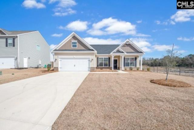 145 Sunny View Lane, Lexington, SC 29073 (MLS #473686) :: EXIT Real Estate Consultants