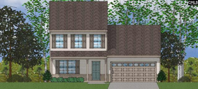 918 Tanreall Drive 28, Lexington, SC 29073 (MLS #473704) :: EXIT Real Estate Consultants