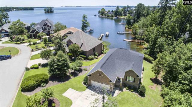120 Pointe Overlook Drive, Chapin, SC 29036 (MLS #473727) :: Home Advantage Realty, LLC