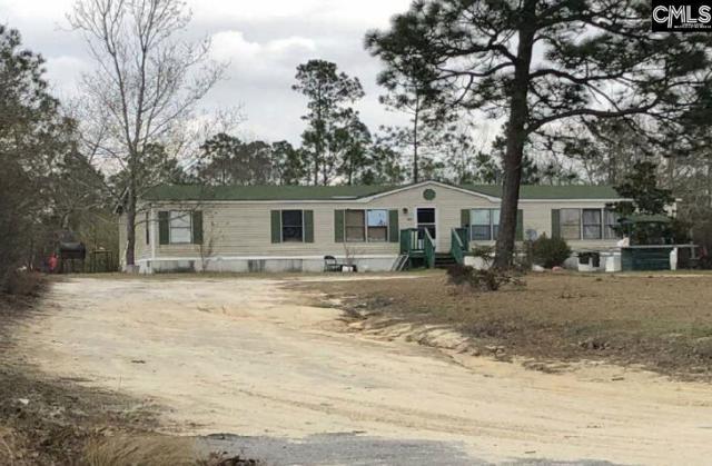 626 Truex Road, Leesville, SC 29070 (MLS #473730) :: The Neighborhood Company at Keller Williams Palmetto