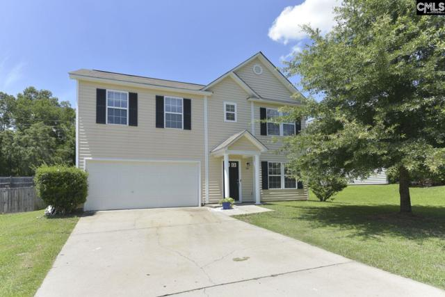 360 Eagle Pointe Drive, Chapin, SC 29036 (MLS #473784) :: EXIT Real Estate Consultants