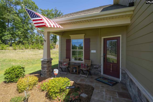 1164 Portrait Hill Drive, Chapin, SC 29036 (MLS #473797) :: EXIT Real Estate Consultants