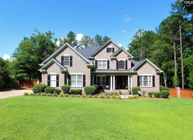 123 Mallory Drive, Lexington, SC 29072 (MLS #473812) :: EXIT Real Estate Consultants