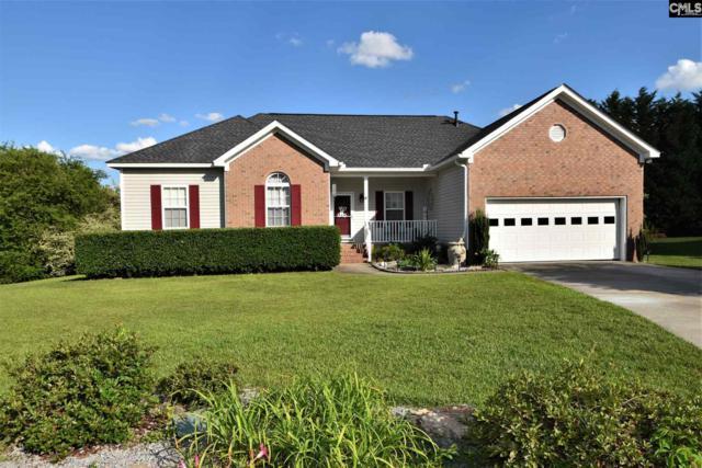 165 Rustic Crossing, Lexington, SC 29073 (MLS #473817) :: EXIT Real Estate Consultants