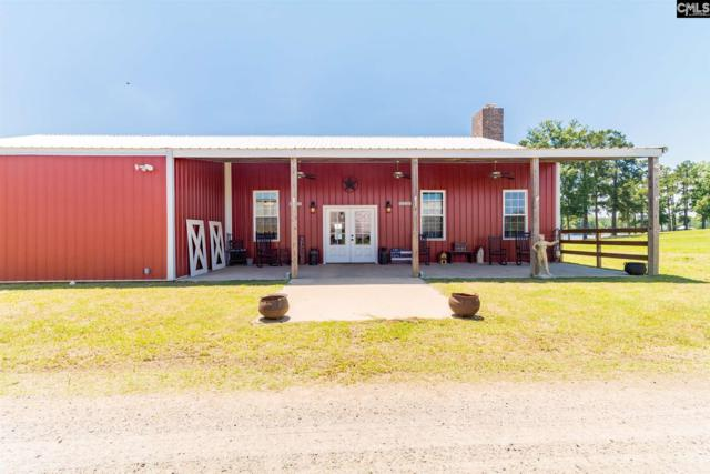 599 Hutto Island Drive, Leesville, SC 29070 (MLS #473823) :: EXIT Real Estate Consultants