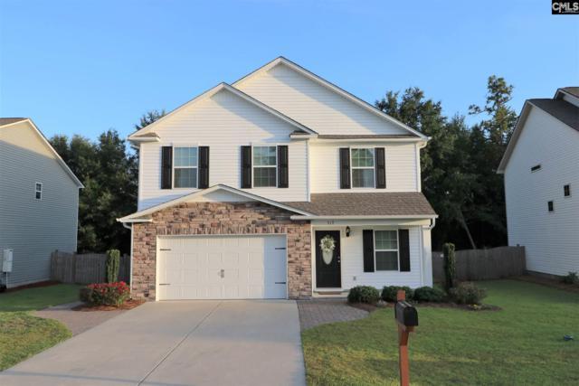 517 Colony Lakes Drive, Lexington, SC 29073 (MLS #473826) :: EXIT Real Estate Consultants