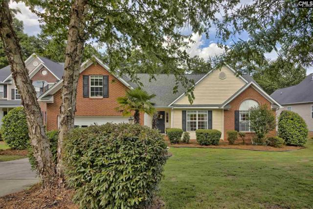 320 Amberwood Circle, Irmo, SC 29063 (MLS #473841) :: EXIT Real Estate Consultants