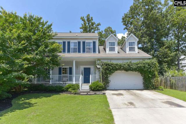 145 Walkbridge Way, Chapin, SC 29036 (MLS #473851) :: Home Advantage Realty, LLC