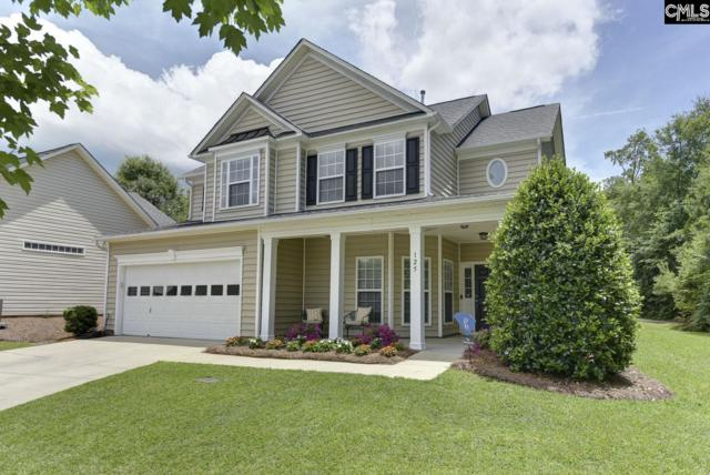 125 Stonemill Court, Irmo, SC 29063 (MLS #473863) :: EXIT Real Estate Consultants