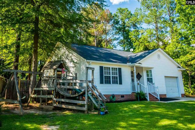 8 Abberton Court, Chapin, SC 29036 (MLS #473889) :: Home Advantage Realty, LLC