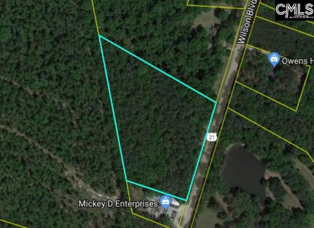 11041 Wilson Boulevard, Blythewood, SC 29016 (MLS #473908) :: Home Advantage Realty, LLC