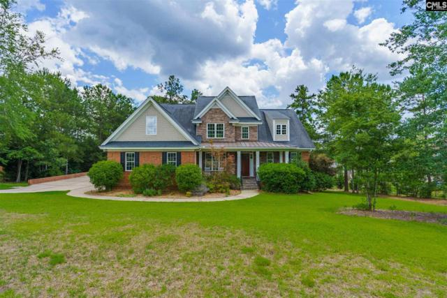128 Bellelake Court, Columbia, SC 29223 (MLS #473927) :: Home Advantage Realty, LLC