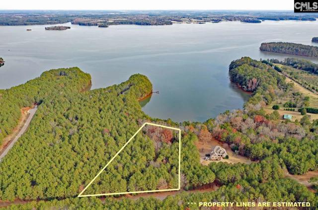 1311 Cole Trestle Road, Blair, SC 29015 (MLS #473975) :: Home Advantage Realty, LLC