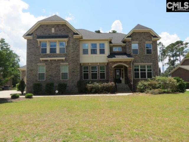 518 Patterdale Lane, Blythewood, SC 29016 (MLS #473998) :: The Olivia Cooley Group at Keller Williams Realty
