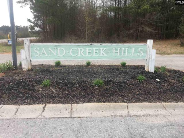 Lot 16 Sandcreek Drive #16, Winnsboro, SC 29180 (MLS #474027) :: Resource Realty Group