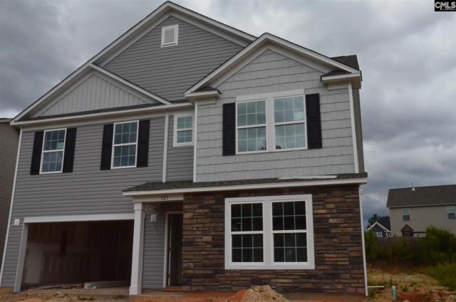 1538 Old Lexington Highway, Chapin, SC 29036 (MLS #474110) :: Fabulous Aiken Homes & Lake Murray Premier Properties
