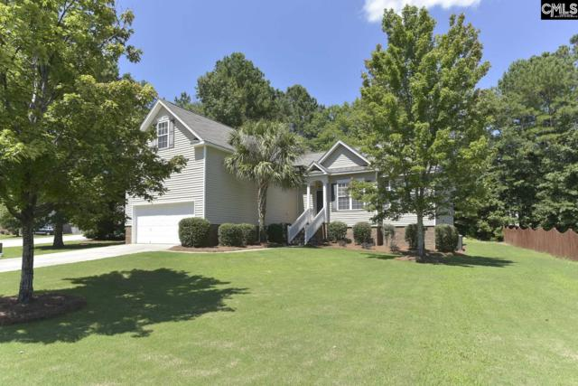 156 Hearthwood Circle, Irmo, SC 29063 (MLS #474154) :: EXIT Real Estate Consultants