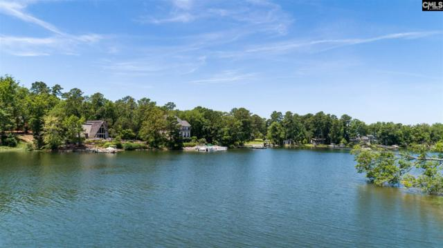 229 Palm Lake Dr., Columbia, SC 29212 (MLS #474157) :: EXIT Real Estate Consultants