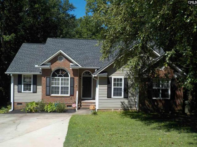 102 Wenlock Circle, Irmo, SC 29063 (MLS #474185) :: EXIT Real Estate Consultants